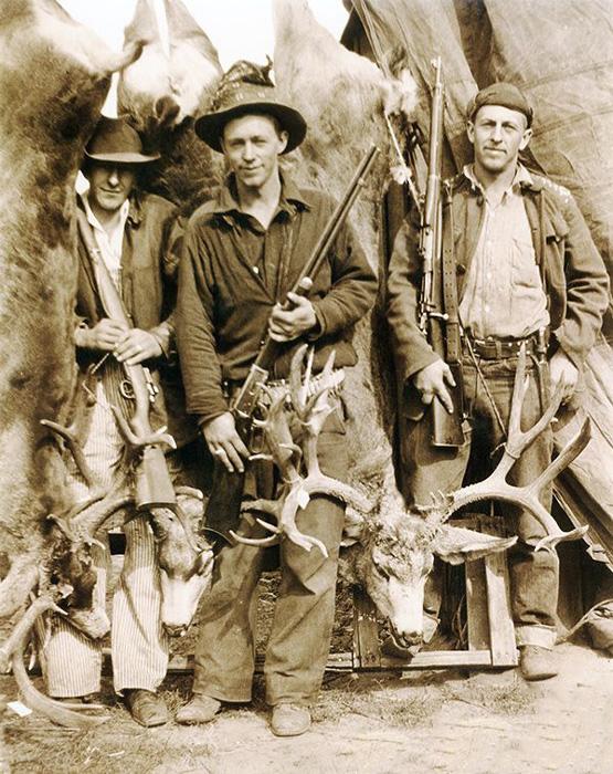 Utah mule deer from 1932