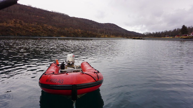 Utilizing a boat in Kodiak Alaska for hunting