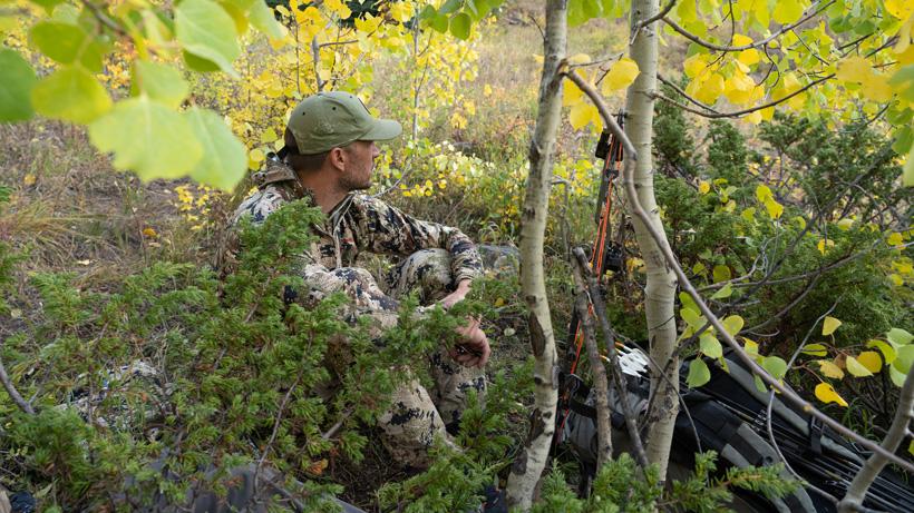 Waiting for elk near a wallow