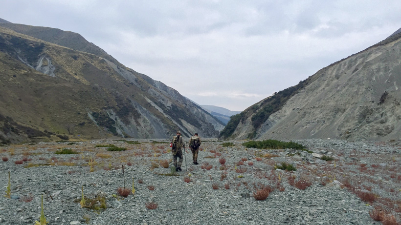 Walking up creek beds in New Zealand