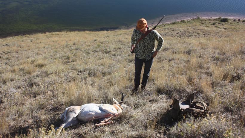 Walking up to the antelope