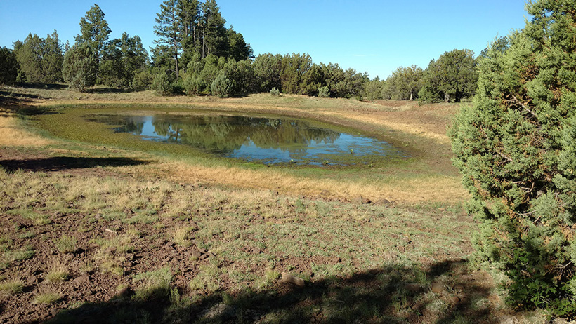 Water hole location for hunting