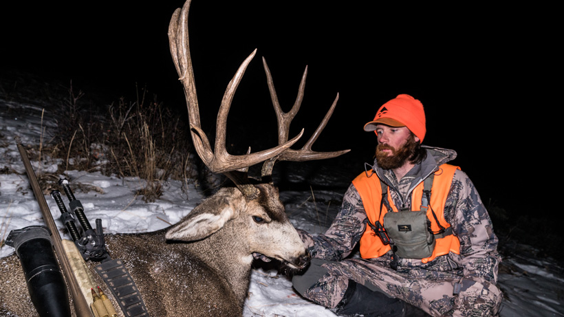 What Colorado mule deer season is right for you