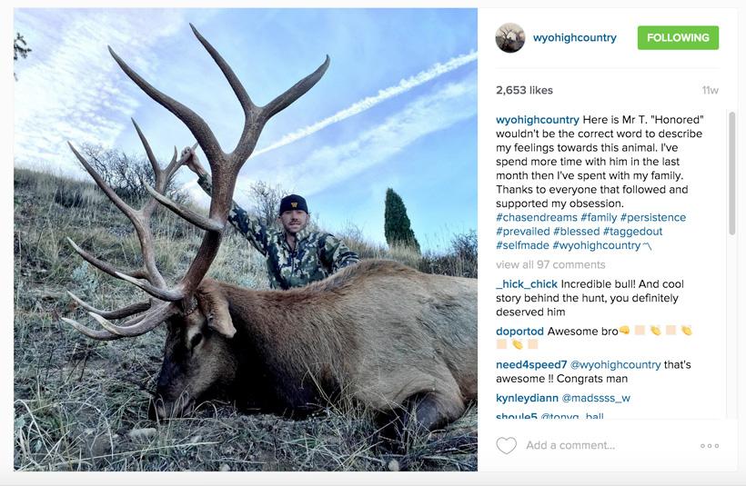 2a10ffe53eea Wyohighcountry questioned bull elk  backcountry or high fence