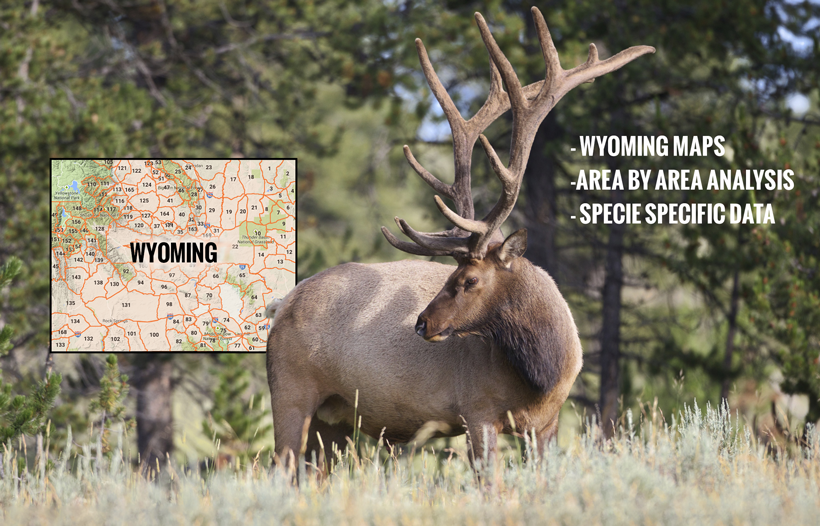 Wyoming INSIDER sneak peek