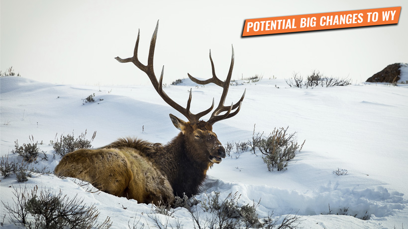 Wyoming bill SF0094 to severely impact Wyoming nonresident hunters