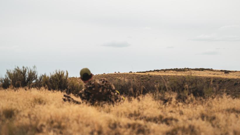Antelope strategies for pre-rut and rut