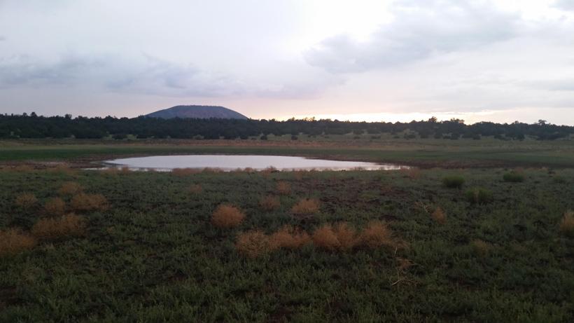 Waterhole where the elk were at