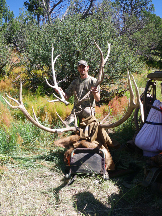 The shed antlers compared to the bull