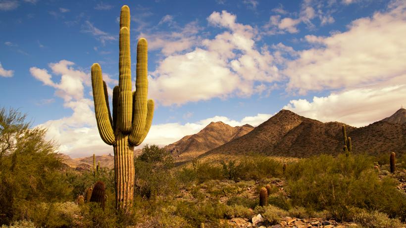 Arizona public lands