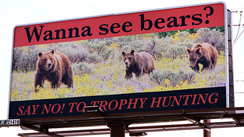 Anti-hunting grizzly sign