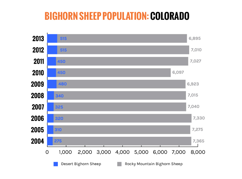 Colorado bighorn sheep population chart