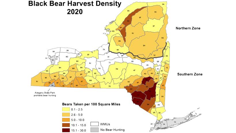 Black bear harvest density 2020