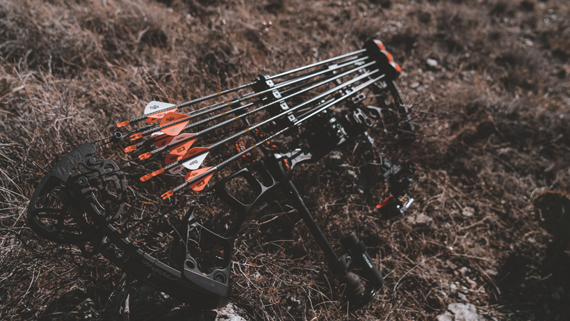 Bow vs. rifle: which is deadlier