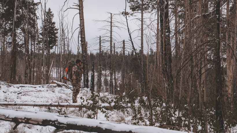 Difficulty of bowhunting