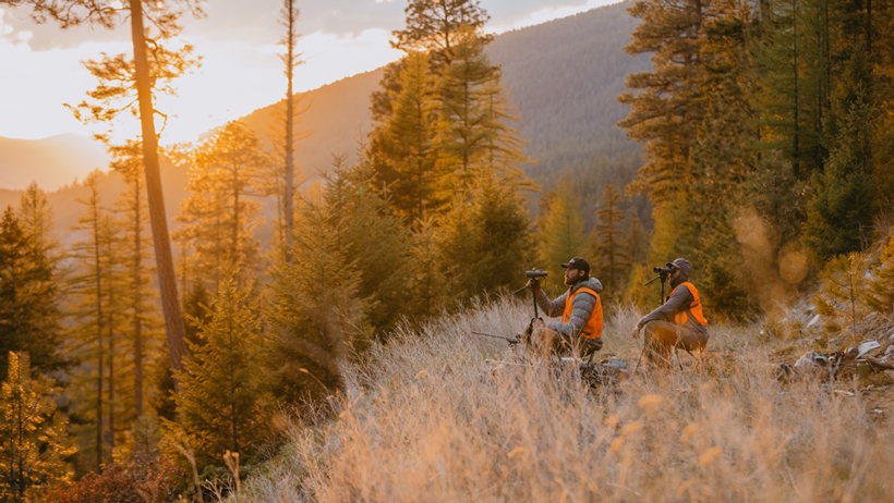 HUNTING LESSONS LEARNED