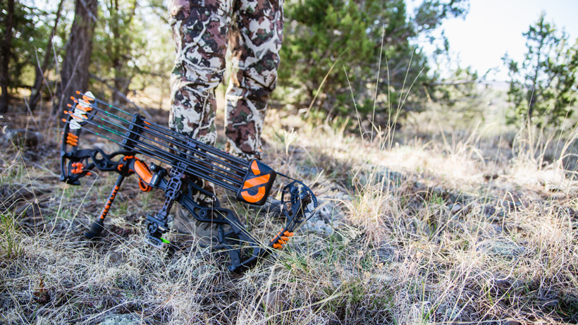 Is carbon worth it for a bow?