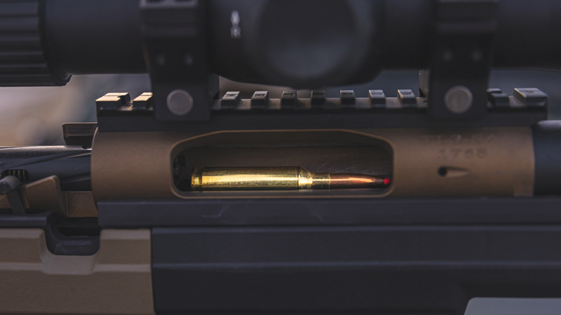 Firearms: what to inspect?