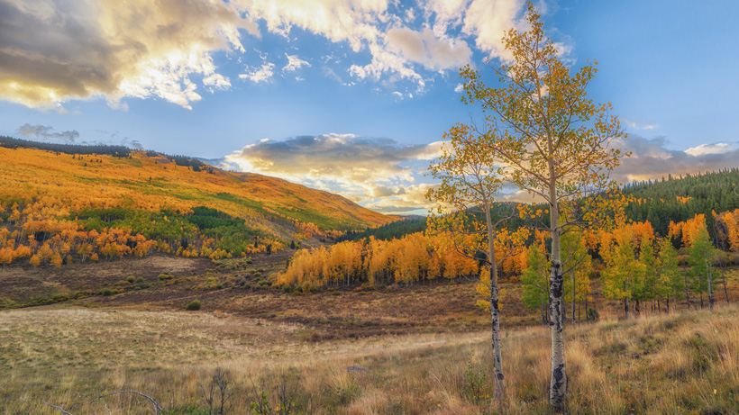 Colorado Public Land