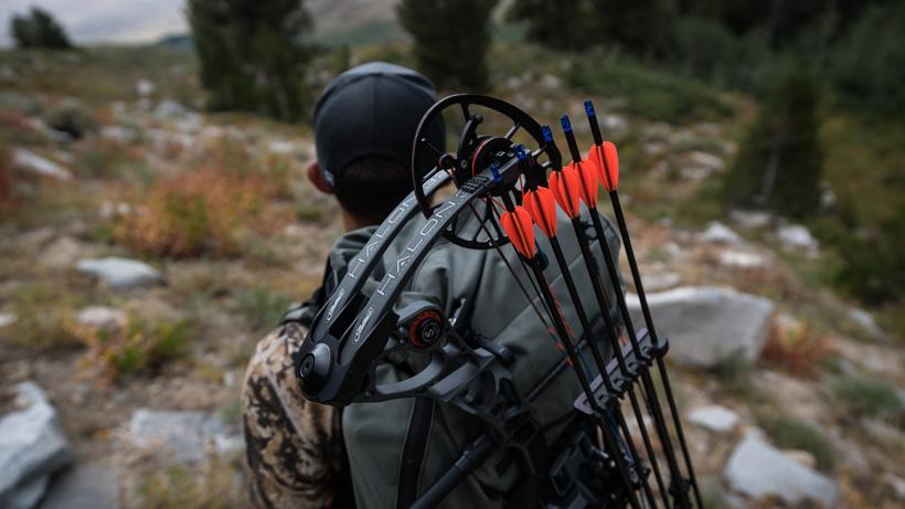 Do you really need a new bow?