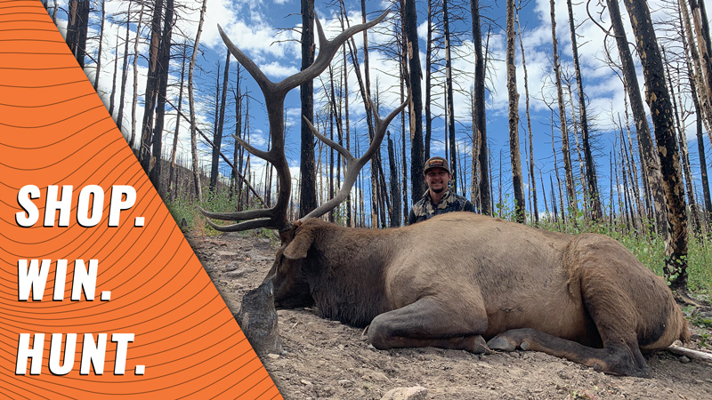 Dream Hunt Giveaway: Utah Limited Entry Elk Hunt
