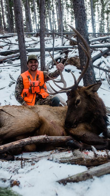 Dan Wilde and his bull elk