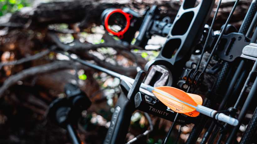 How to get into bowhunting if you don't know anyone who bowhunts
