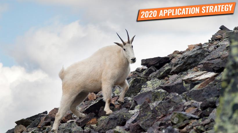 Application strategy 2020: Washington sheep, goat and moose
