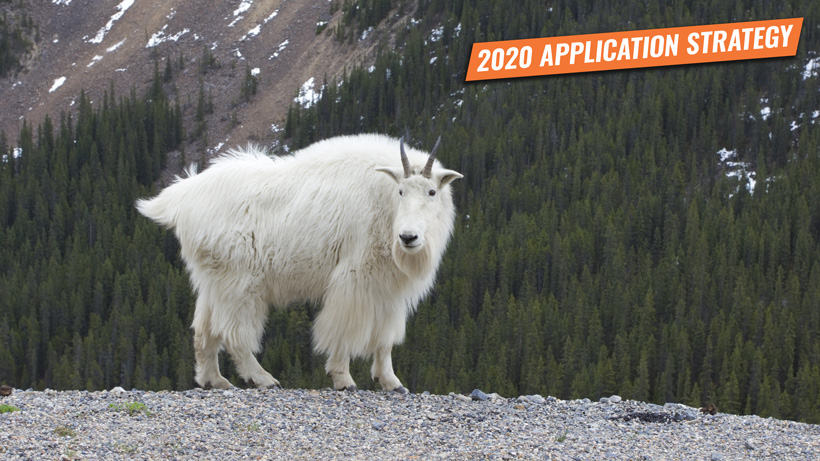 2020 Idaho application strategy: Moose, sheep and goat