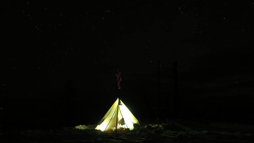 Mule deer camp