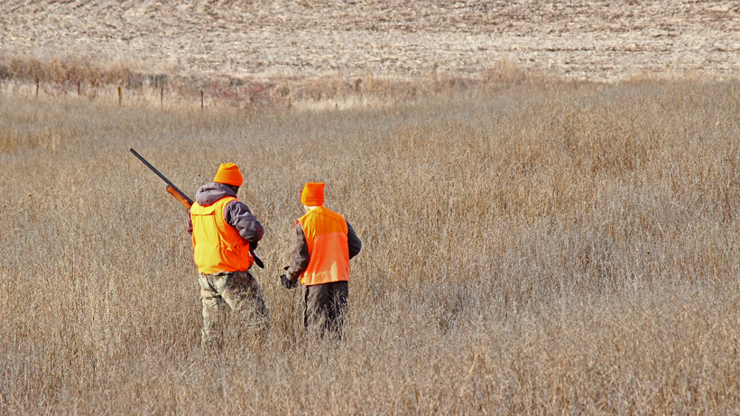 Iowa pheasant hunting