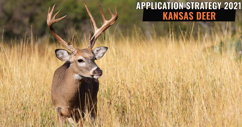 Application Strategy 2021: Kansas Deer