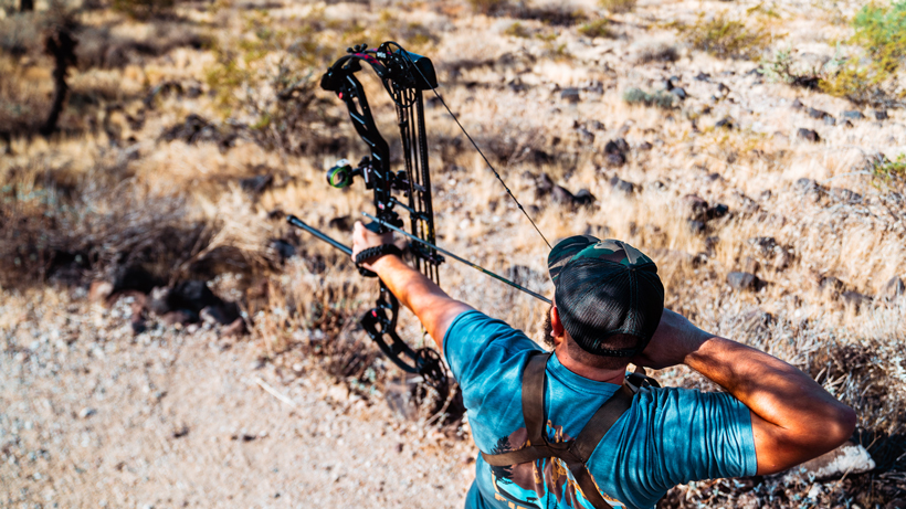 Is your bow tuned?