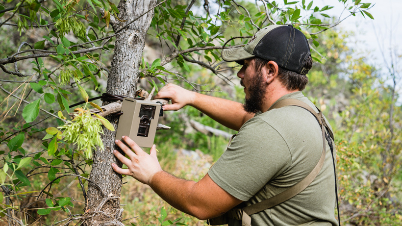 Checking trail cameras