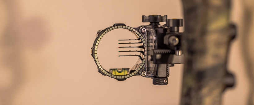 Multiple pin sight picture
