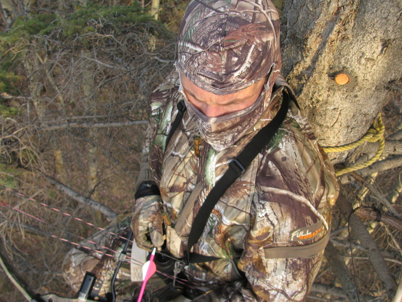 Treestand waiting for the buck