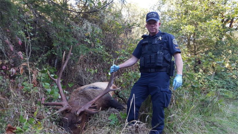 Oregon trooper responding to poachings