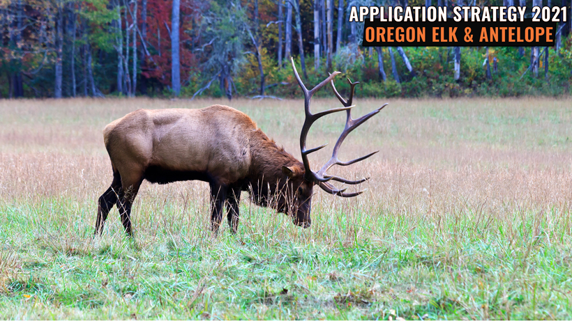 APPLICATION STRATEGY 2021: OREGON ELK AND ANTELOPE