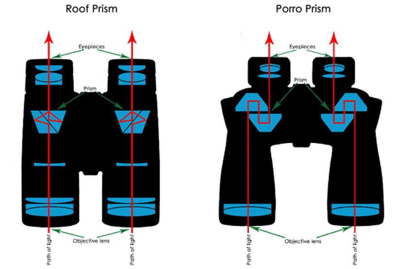Roof and Porro prism binoculars