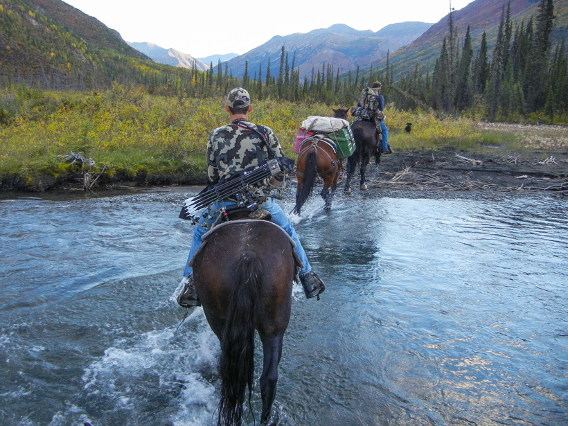 Riding horses to camp
