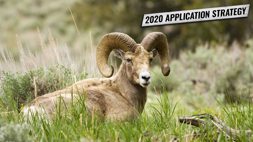 OREGON'S 2020 BIGHORN SHEEP AND MOUNTAIN GOAT APPLICATION STRATEGY