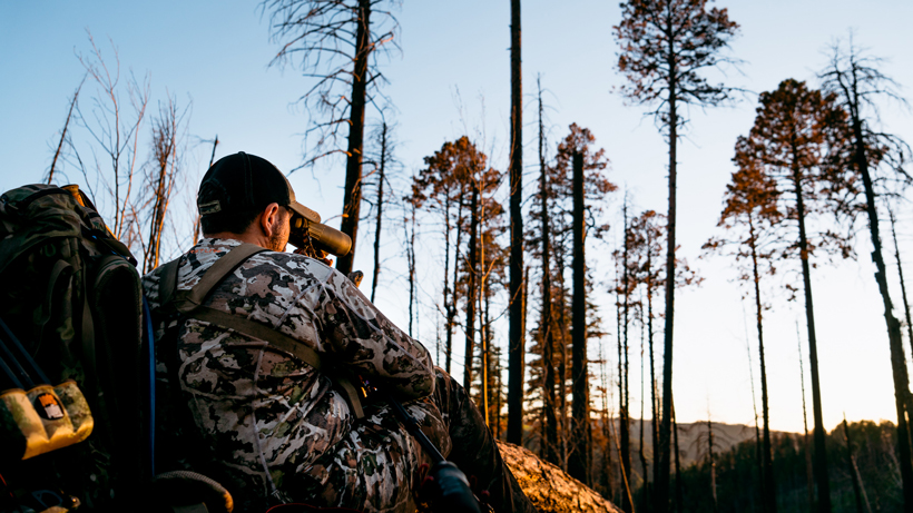 Are mornings really that bad for spring bear hunting?