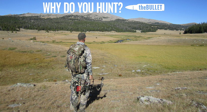 theBULLET - Why do you hunt?