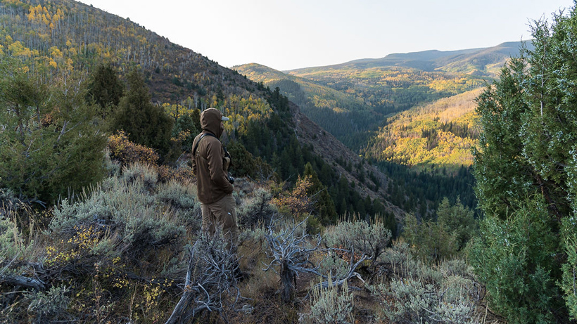 Trail and Neville's 2020 Colorado Bull Elk Hunt