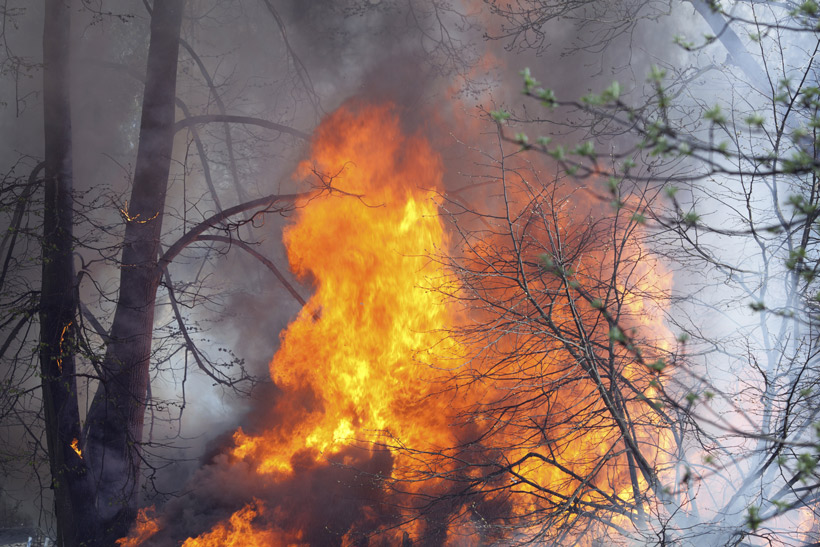 Wildfires impacting big game & how to track fires | goHUNT