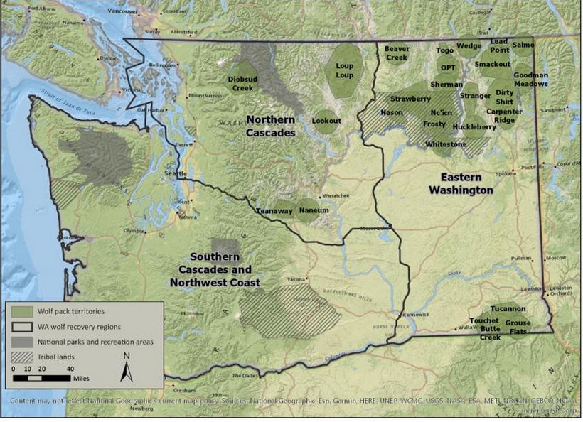Washington wolf recovery map