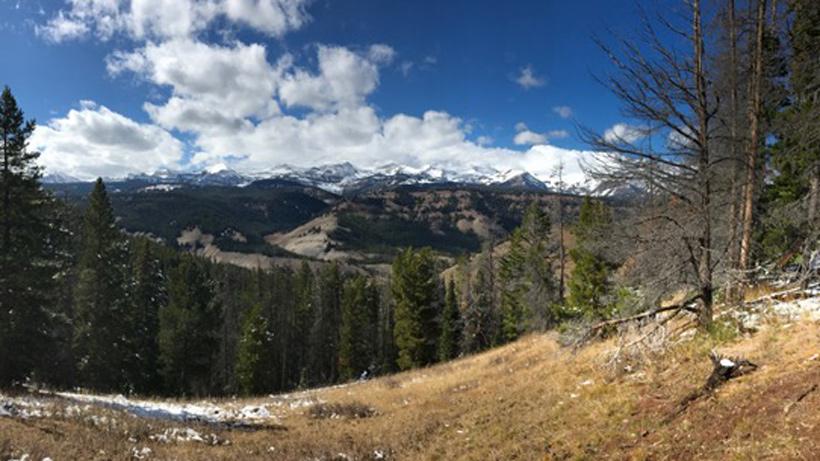 Wyoming elk country