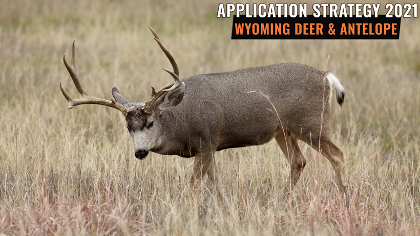 APPLICATION STRATEGY 2021: WYOMING DEER AND ANTELOPE