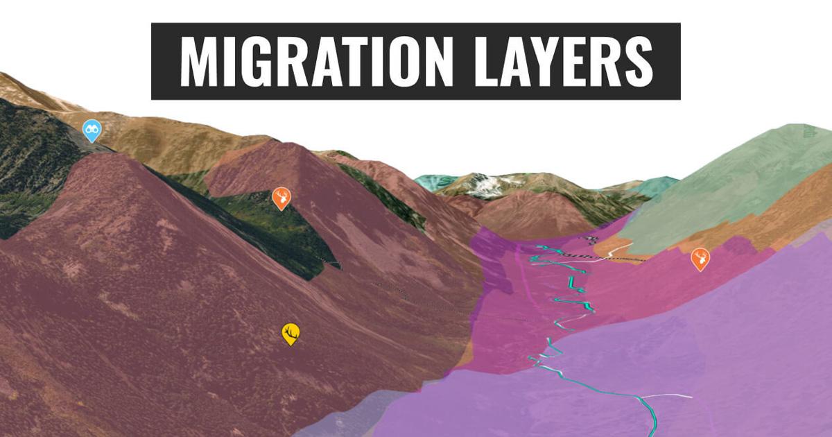 migration layers OG.'