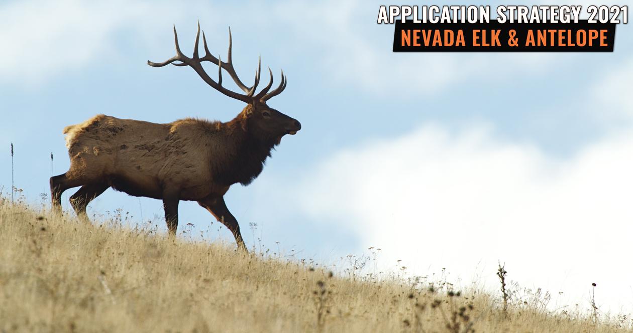 APPLICATION STRATEGY 2021: Nevada Elk & Antelope